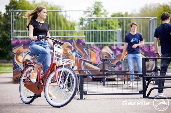 Gazelle Puur NL Transportfiets